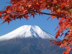 移民日本有哪些条件,日本签证介绍