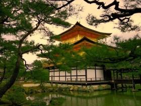 移民日本需要什么条件,定居日本要求高吗?