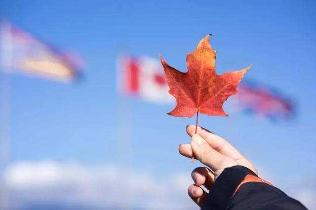 怎么申请加拿大移民?没钱的普通人也能拿枫叶卡