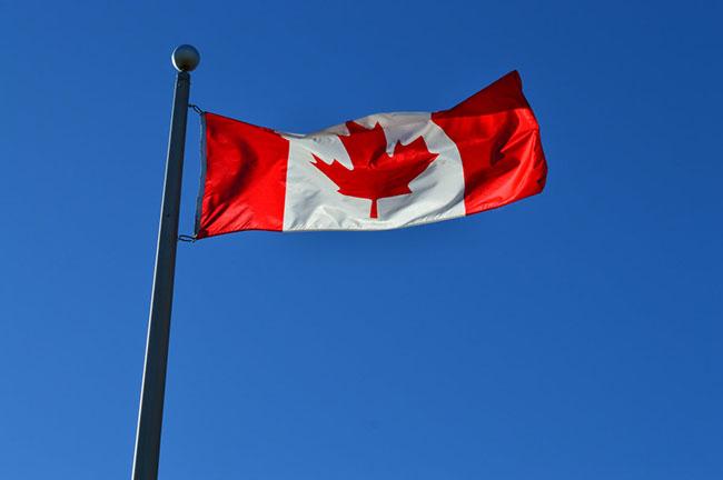 加拿大移民中介机构怎么选择靠谱的