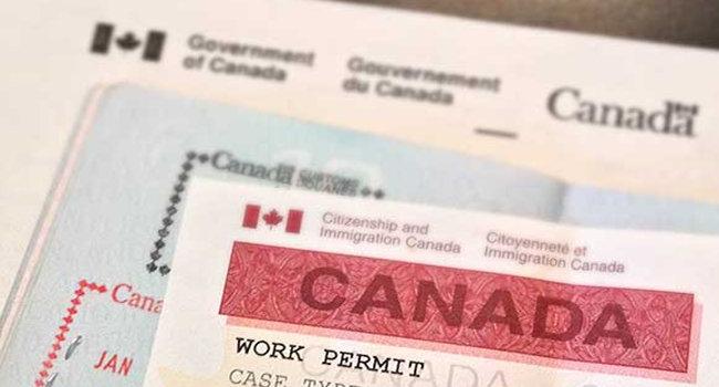 加拿大移民部称疫情期间远程网课将不影响毕业工签申请