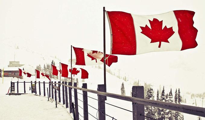 噩耗!加拿大移民最新政策:移民数量将大减!