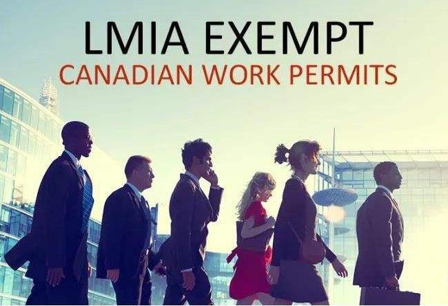 加拿大安省LMIA