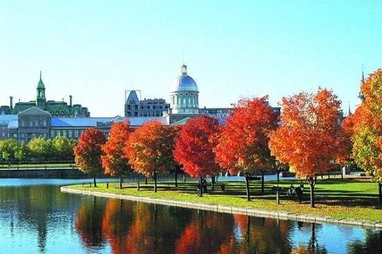加拿大安省雇主担保移民有哪些条件 申请流程复杂吗