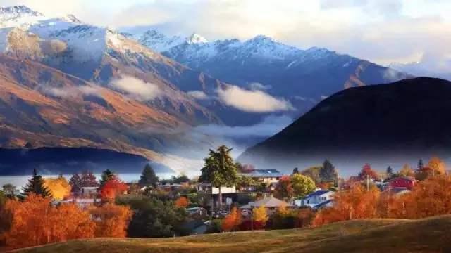 新西兰移民需要什么条件,新西兰亲属团聚移民条件分享