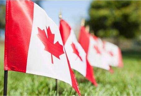 怎样移民加拿大?BC生雇主担保移民在等你