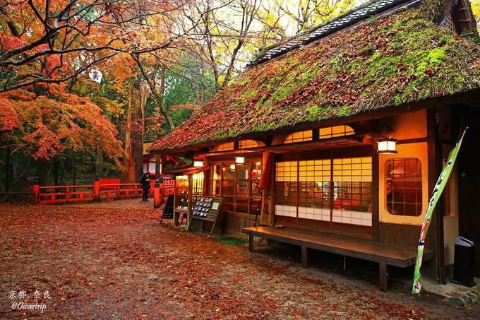 疫情冲击日本旅游业,感到憋闷的却是中国人