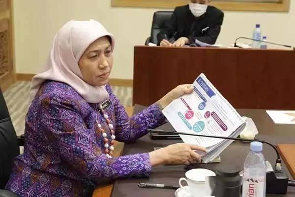 马来西亚第二家园项目有望重新开放