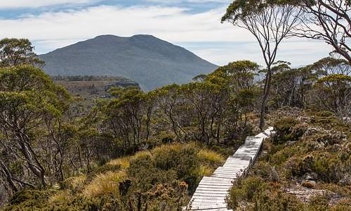 澳大利亚移民政策最新条件,想要移民澳洲记得收藏