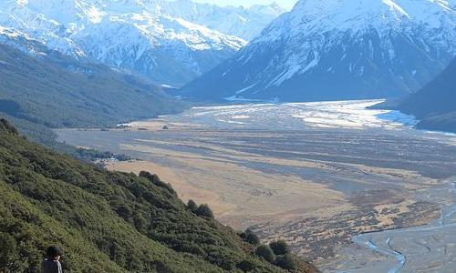 新西兰边境开放时间最新消息